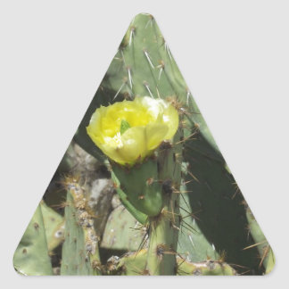 Yellow Prickly Pear Blossom Stickers