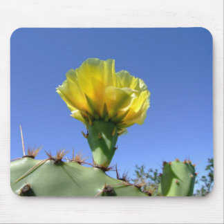 Yellow prickly pear cactus flower mouse pad