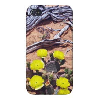 Yellow-Prickly Pear Cactus flowers iPhone 4/4S Covers