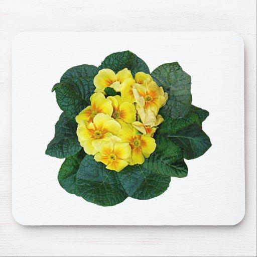 Yellow Primroses Mouse Pad