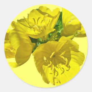 Yellow Primroses - Sundrops Classic Round Sticker