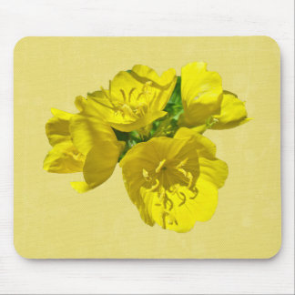 Yellow Primroses - Sundrops Mouse Pad