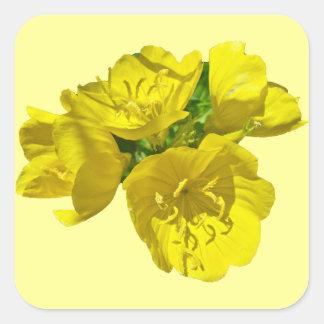 Yellow Primroses - Sundrops Stickers