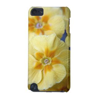 Yellow Primulas iPod Touch case
