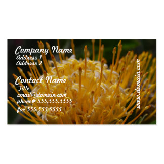 Yellow Protea Business Cards