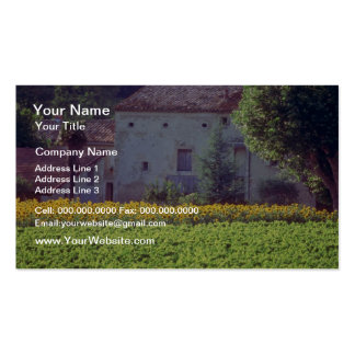 yellow Provencal mas near Carpentras in field of s Business Card