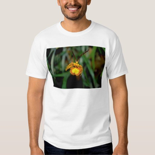 yellow Psychopsis flowers T-shirts