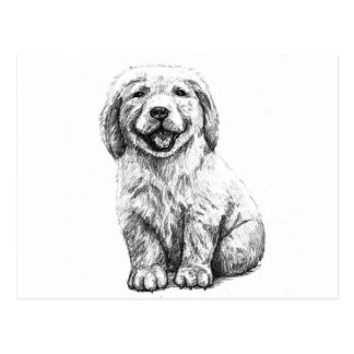 Yellow Puppy Lab Postcard