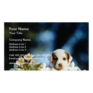 Yellow Puppy with brown ears looking over iron fen Business Card Template