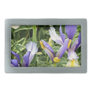 Yellow & purple irises belt buckle