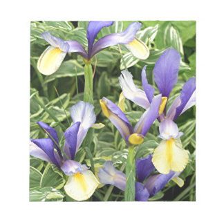Yellow & purple irises notepad