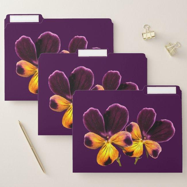 Yellow Purple Pansy Flowers File Folder Set