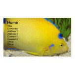 Yellow Queen Angelfish Business Card