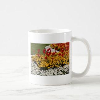 yellow Rainbow flowerbeds flowers Classic White Coffee Mug