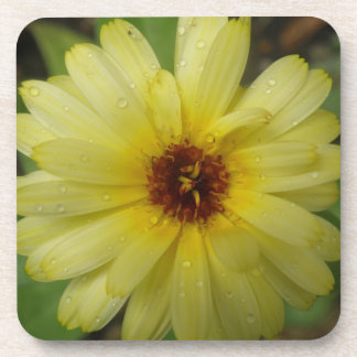 Yellow Raindrops Marigold Cork Coaster