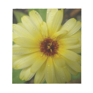 Yellow Raindrops Marigold Notepad