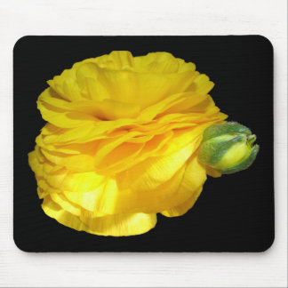Yellow Ranunculus Mouse Pad