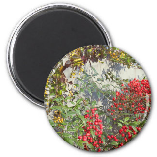 yellow & red berries magnet