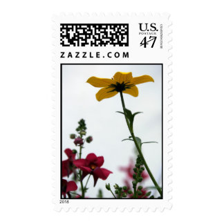 Yellow & Red - Floral Photography Postage