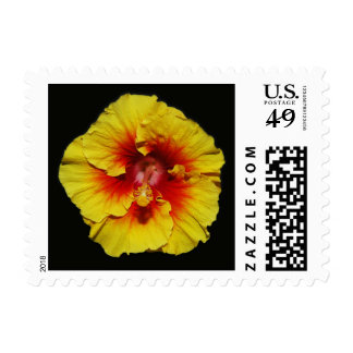 Yellow Red Hibiscus Postage