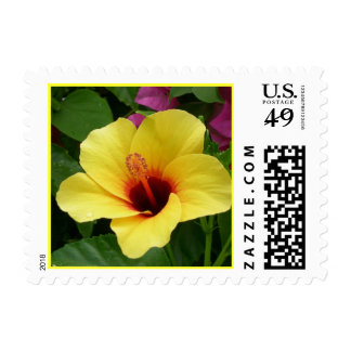 Yellow & Red Hibiscus Postage
