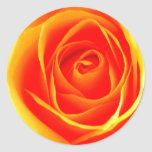 Yellow /Red Rose Sticker