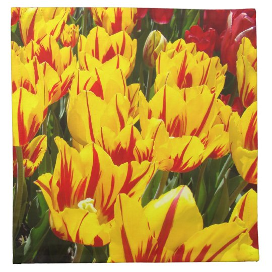 Yellow Red Tulip Flowers Napkins Spring