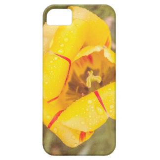 Yellow-Red Tulip III iPhone SE/5/5s Case