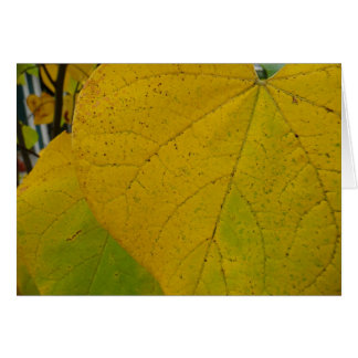 Yellow Redbud Leaves Autumn Nature Photography Card