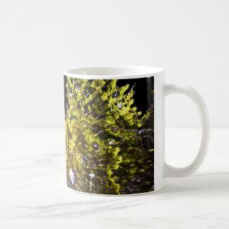 Yellow Rhinopias on black background Coffee Mug
