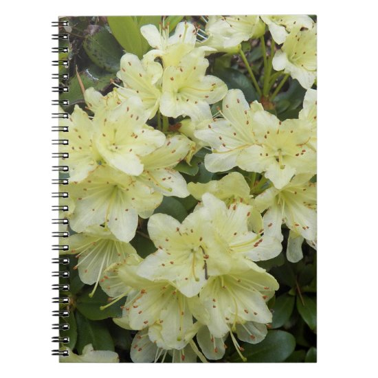 Yellow Rhododendrons Floral Notebook