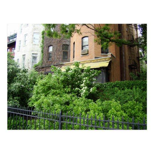 Yellow roof & garden postcard