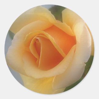 yellow rose2B Round Sticker