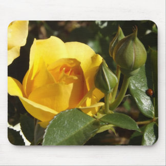 Yellow rose and ladybug mouse pad