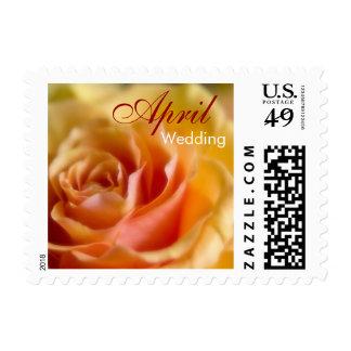 Yellow Rose • April Wedding Stamp