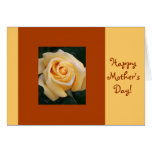 Yellow Rose Beauty Cards