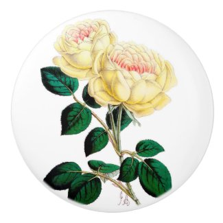 Yellow Rose Bloom Ceramic Knob