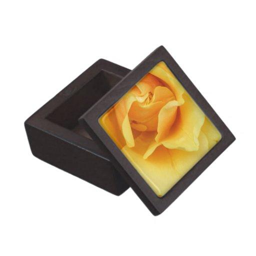 Yellow Rose Blossom Premium Gift Box