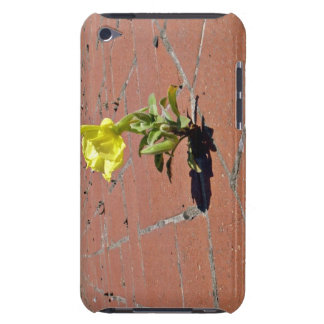 Yellow rose blossoming on a sunny day iPod touch Case-Mate case