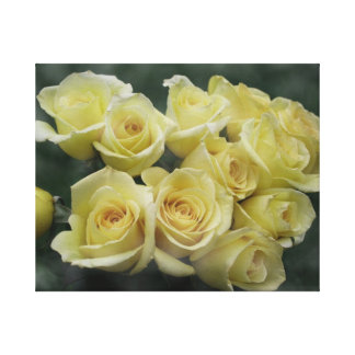 Yellow Rose bouquet spotted background Canvas Print