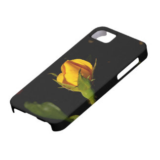 Yellow Rose Bud iPhone 5 Covers