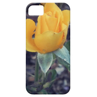 Yellow Rose Bud iPhone 5 Cover