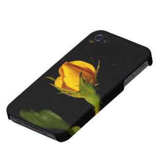 Yellow Rose Bud Case For iPhone 4