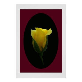 Yellow Rose Bud  Posters