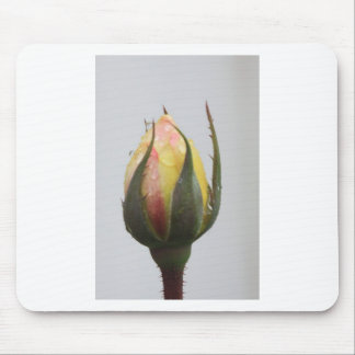 Yellow Rose bud with rain droplets. Mouse Pad