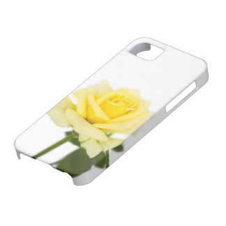 Yellow rose iPhone 5 cover