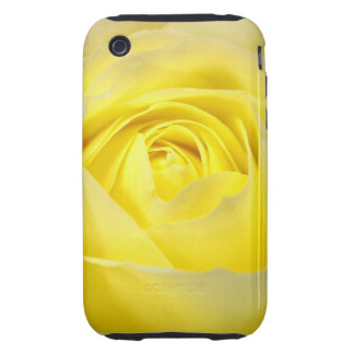 Yellow Rose iPhone 3 Tough Cover