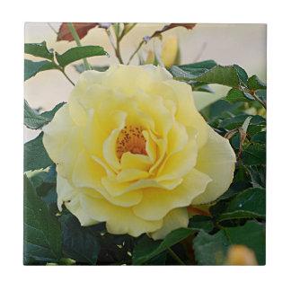 Yellow Rose Ceramic Tile