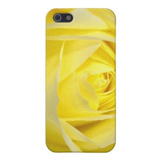 Yellow Rose Closeup iPhone SE/5/5s Cover