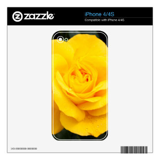 Yellow Rose Decal For The iPhone 4S